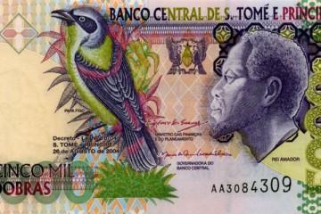Rei Amador Dollar