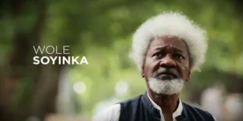 wole-soyinka-80th-birthday