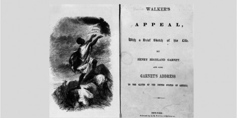 Walker appeal cover 2